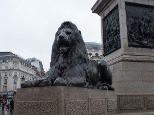 Löwe an der Nelson Column