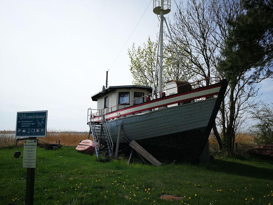 Inselsafari - Ferienhausboot am Achterwasser