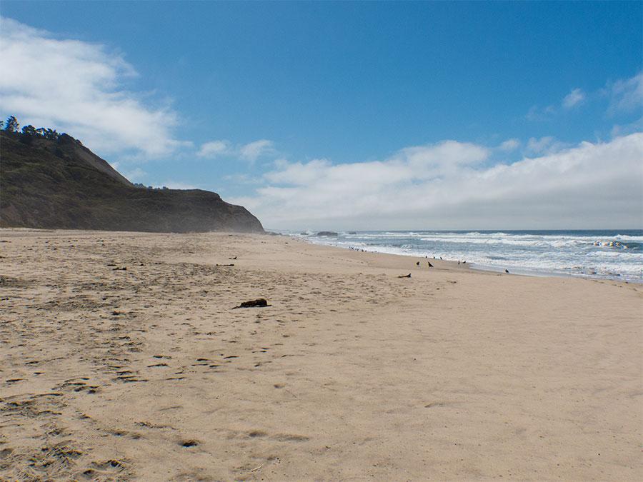 Highway 1 Tunitas Creek Beach