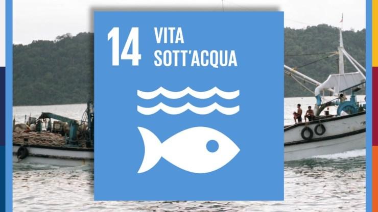 Biodiversità marina, obbiettivo 14 per lo sviluppo sostenibile - Agenda 2030 Nazioni Unite.