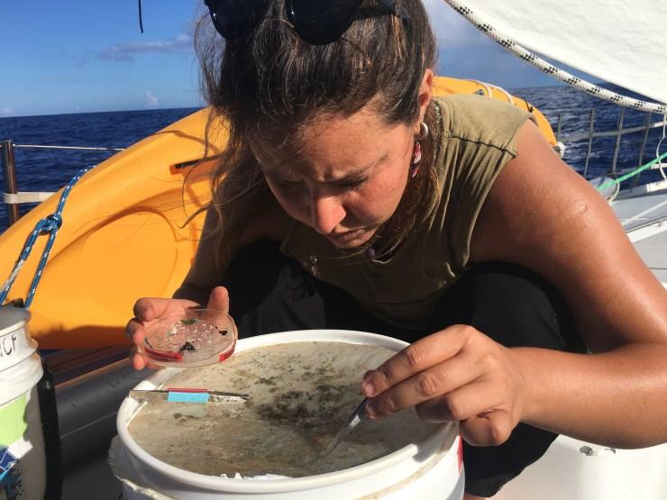 Tutela del pianeta: Maria intenta a separa il microplastico dal campione di acqua marina, durante la spedizione scientifica nel Pacifico del Nord.