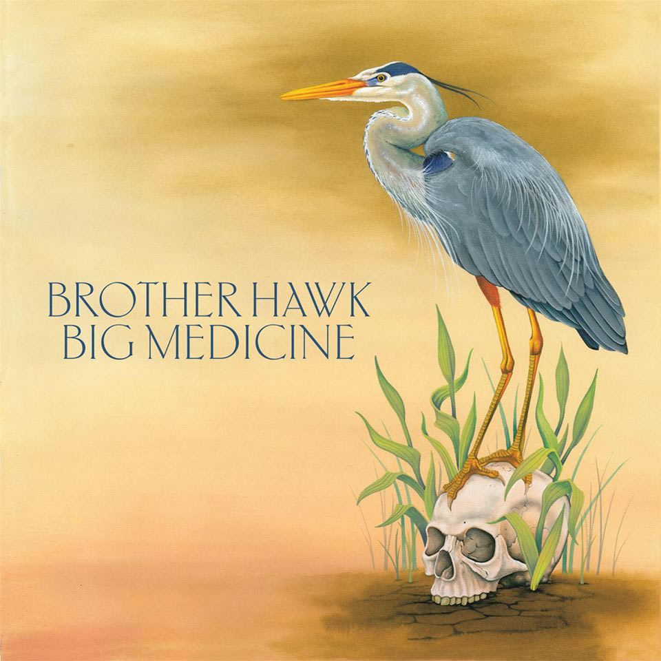 Brother Hawk - Big Medicine