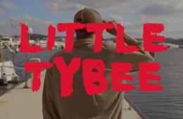 Little Tybee - Lost in the Field