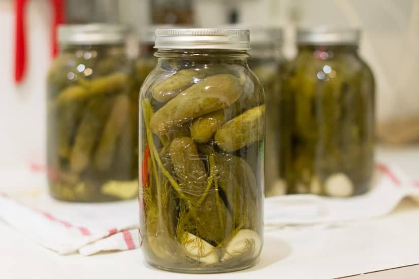 Spicy garlic dill pickles 15