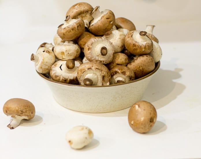 Hearty tomato mushroom stew 2
