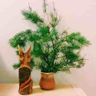 Dreidels, sufganiyot and latkes: My Hanukkah link round-up