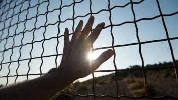 Canada's Immigration Detention System Faces Renewed Criticism