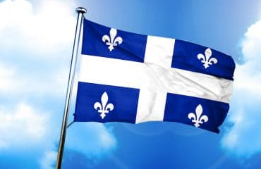 How Many Applications Does the Quebec Immigrant Investor Program (QIIP) Receive Each Year?