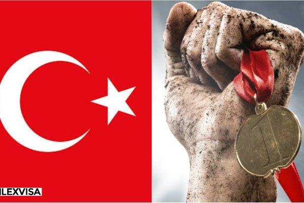 Turkish Businessperson Visa