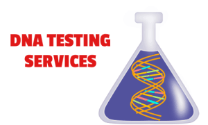 dna testing services for paternity