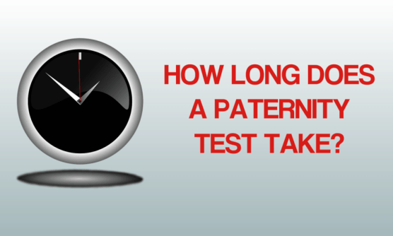 how-long-does-a-paternity-test-take