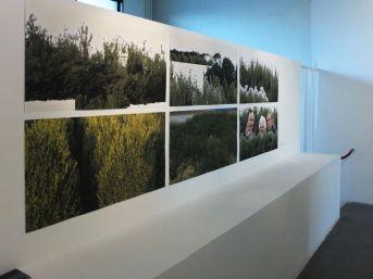 06 IMMIXgalerie OGM