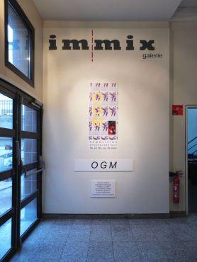 44 IMMIXgalerie OGM