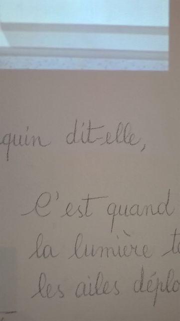 11 Lucie Pastureau