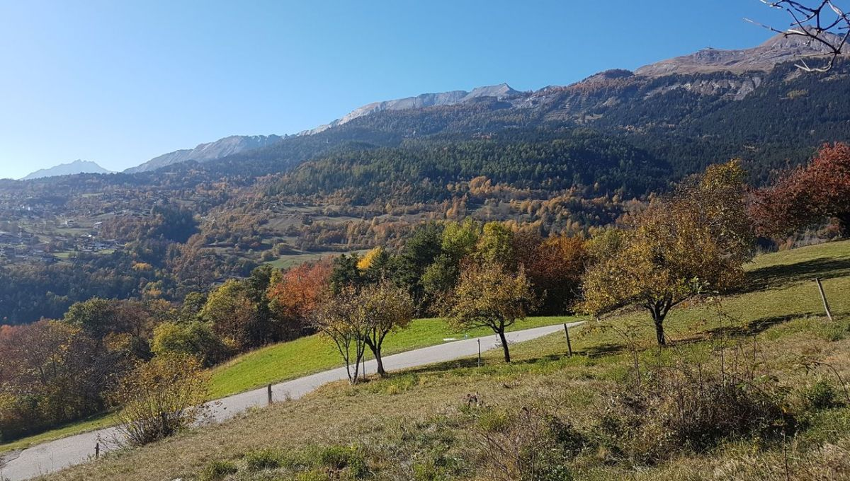 valais immobilier