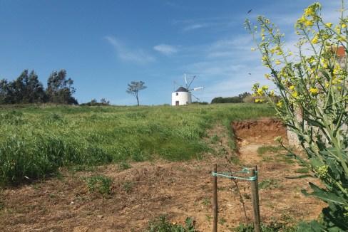 Portugal immobilier villa 12