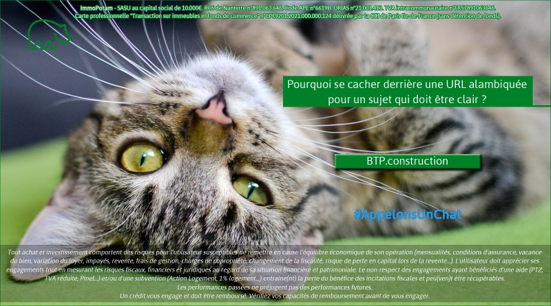 ImmoPotam-appelons-un-chat-BTP-construction-immobilier-maison-appartement-neuf-vefa-logement-ancien-gestion-patrimoine-1p-2p-3p-4p