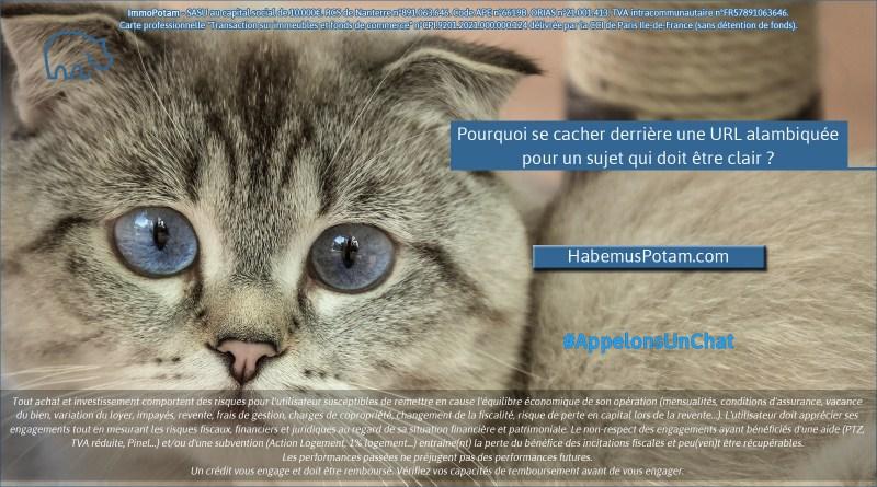 ImmoPotam-appelons-un-chat-HabemusPotam-com-immobilier-maison-appartement-neuf-vefa-logement-ancien-gestion-patrimoine-1p-2p-3p-4p