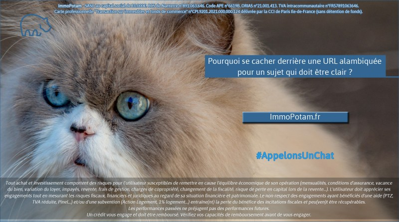 ImmoPotam-appelons-un-chat-ImmoPotam-fr-immobilier-maison-appartement-neuf-vefa-logement-ancien-gestion-patrimoine-1p-2p-3p-4p-5p