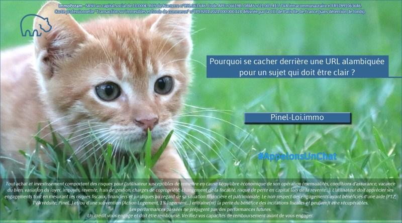 ImmoPotam-appelons-un-chat-Pinel-Loi-immo-immobilier-maison-appartement-neuf-vefa-logement-ancien-gestion-patrimoine-1p-2p-3p-4p