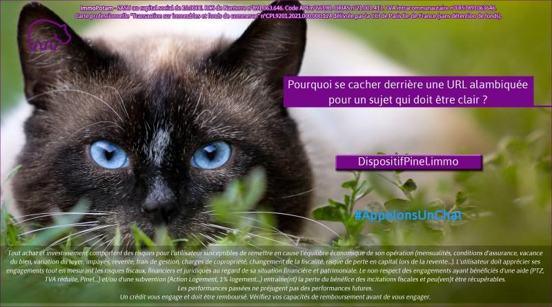 ImmoPotam-appelons-un-chat-DispositifPinel-immo-immobilier-maison-appartement-neuf-vefa-logement-ancien-gestion-patrimoine-1p-2p