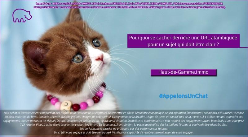ImmoPotam-appelons-un-chat-Haut-de-Gamme-immo-immobilier-maison-appartement-neuf-vefa-logement-ancien-gestion-patrimoine-1p-2p-3p