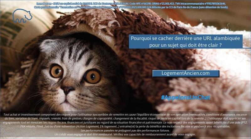 ImmoPotam-appelons-un-chat-LogementAncien-com-immobilier-maison-appartement-neuf-vefa-logement-ancien-gestion-patrimoine-1p-2p-3p