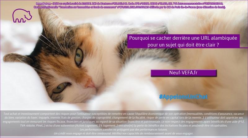 ImmoPotam-appelons-un-chat-Neuf-VEFA-fr-immobilier-maison-appartement-neuf-vefa-logement-ancien-gestion-patrimoine-1p-2p-3p-4p-5p