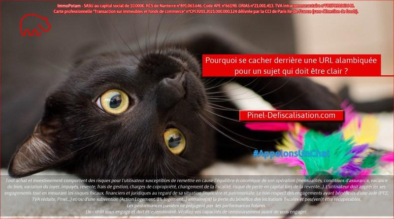 ImmoPotam-appelons-un-chat-Pinel-Defiscalisation-com-immobilier-maison-appartement-neuf-vefa-logement-ancien-gestion-patrimoine-1p