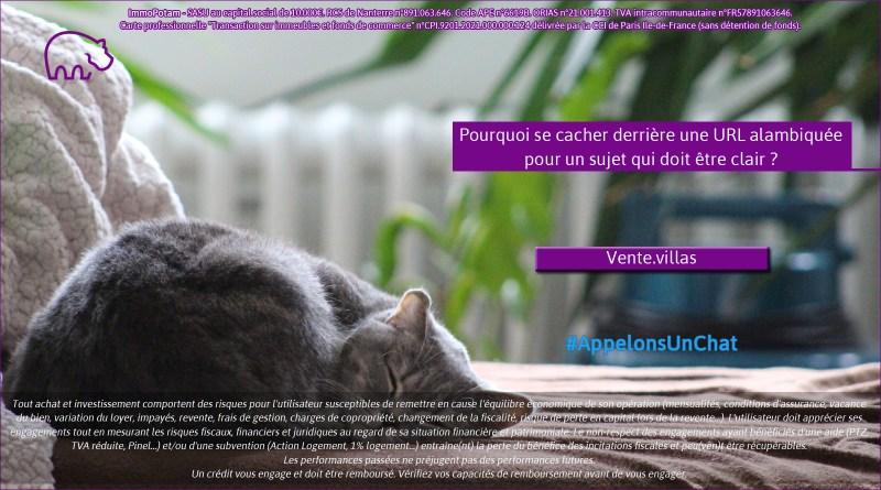 ImmoPotam-appelons-un-chat-Vente-villas-immobilier-maison-appartement-neuf-vefa-logement-ancien-gestion-patrimoine-1p-2p-3p-4p-5p