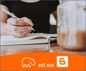 Bannière Blogger - 300x250 px - 10092021-1