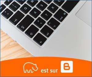 Bannière Blogger - 300x250 px - 10092021-3
