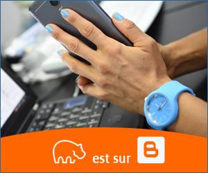 Bannière Blogger - 300x250 px - 10092021-4