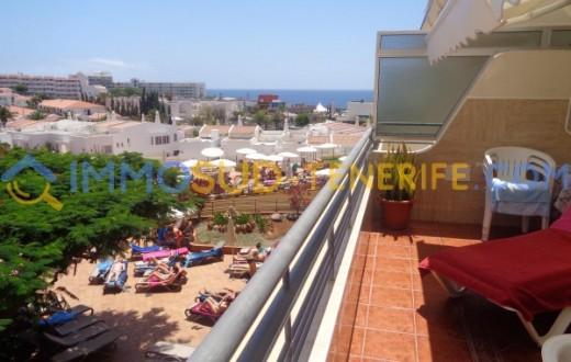 3150K - Playa Las Americas