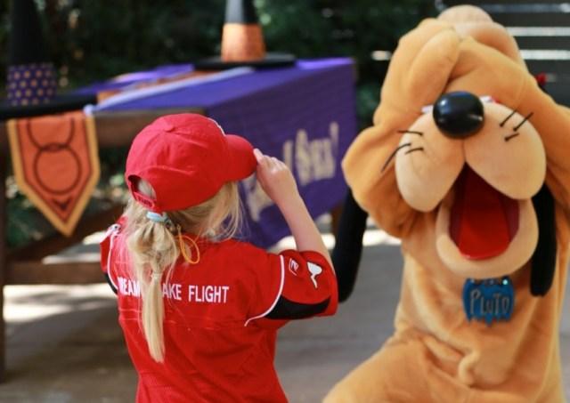 Dreams Take Flight Disney Charity