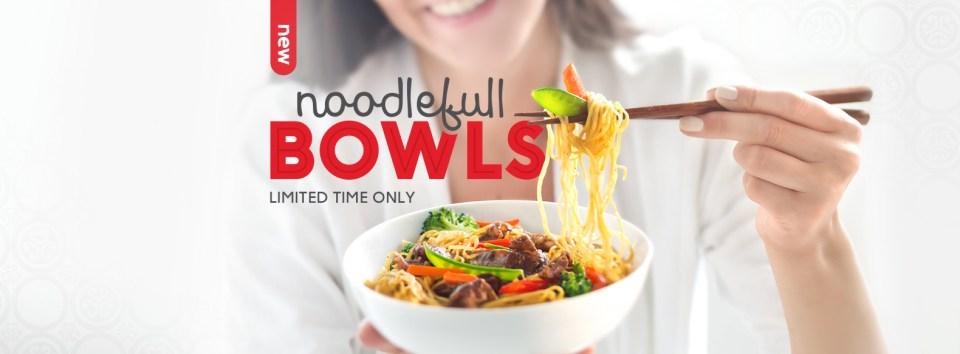 noodlefull-bowls-hero-banner