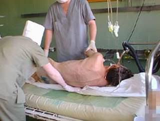 预防 - 细胞(动态)床垫。