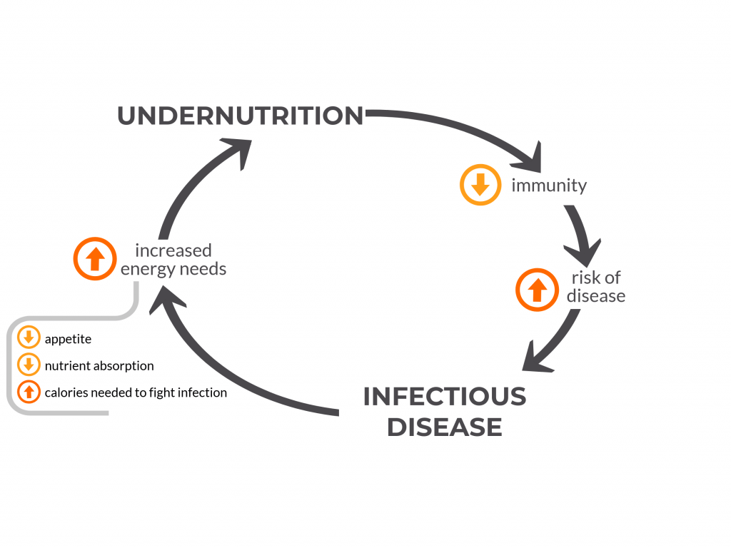 Undernutrition And Infectious Disease
