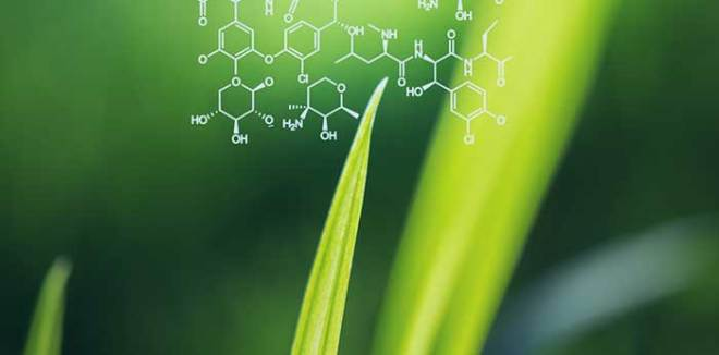 Agro Chemical Discovery using Computational Chemistry - Immunocure