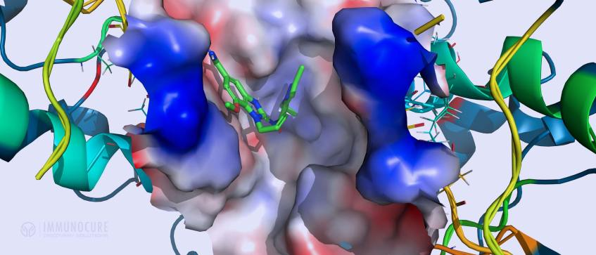 Fragment Binding - Drug Discovery - Computational chemistry Tools