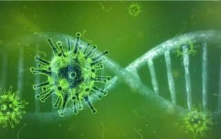 virus et cancers