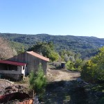 Real Estate Monchique terrain with ruin for sale