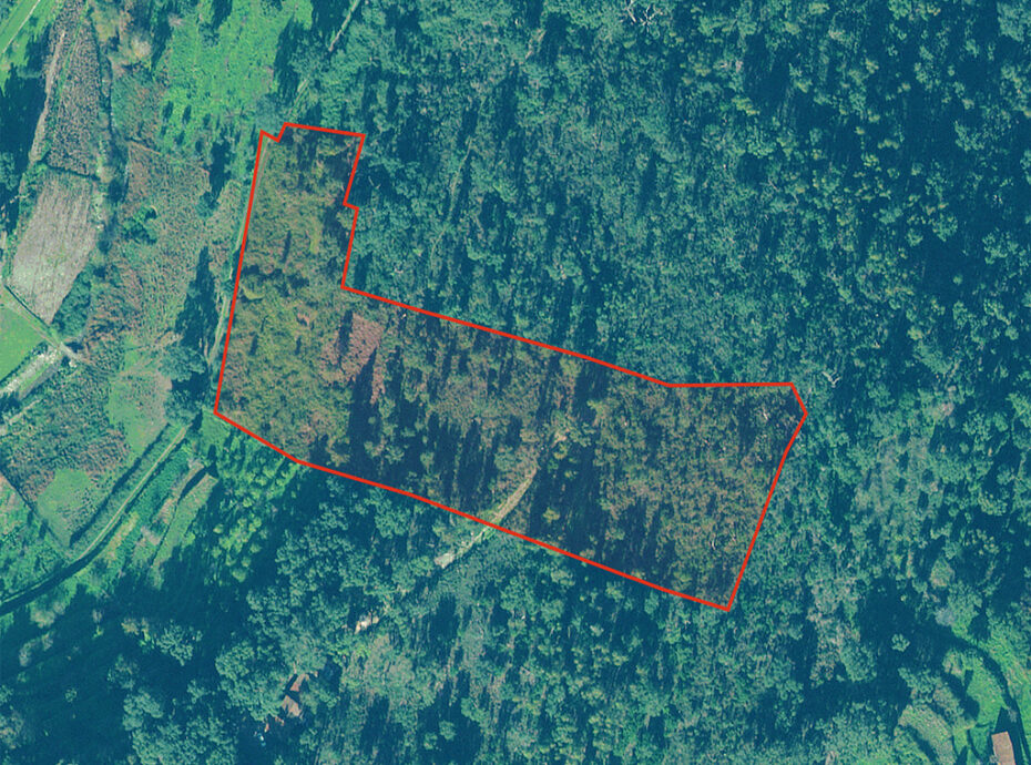 Land with ruin Monchique for sale