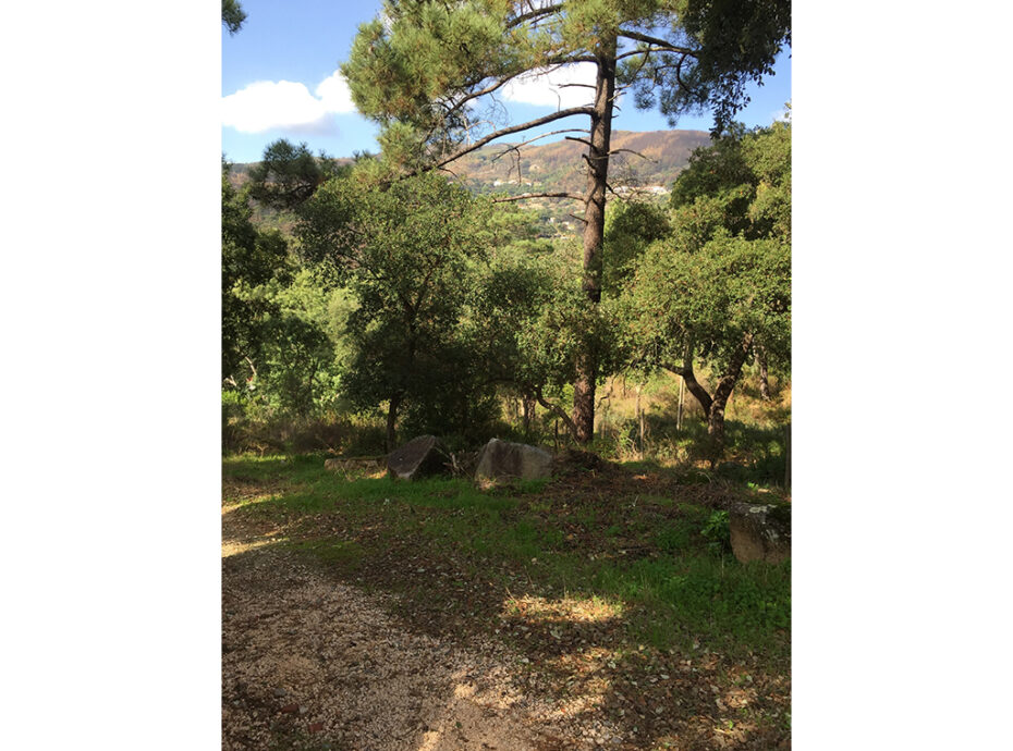 Monchique terrain with approved building plan for sale