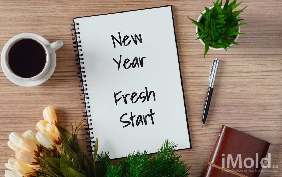 new year fresh start written on a notebook