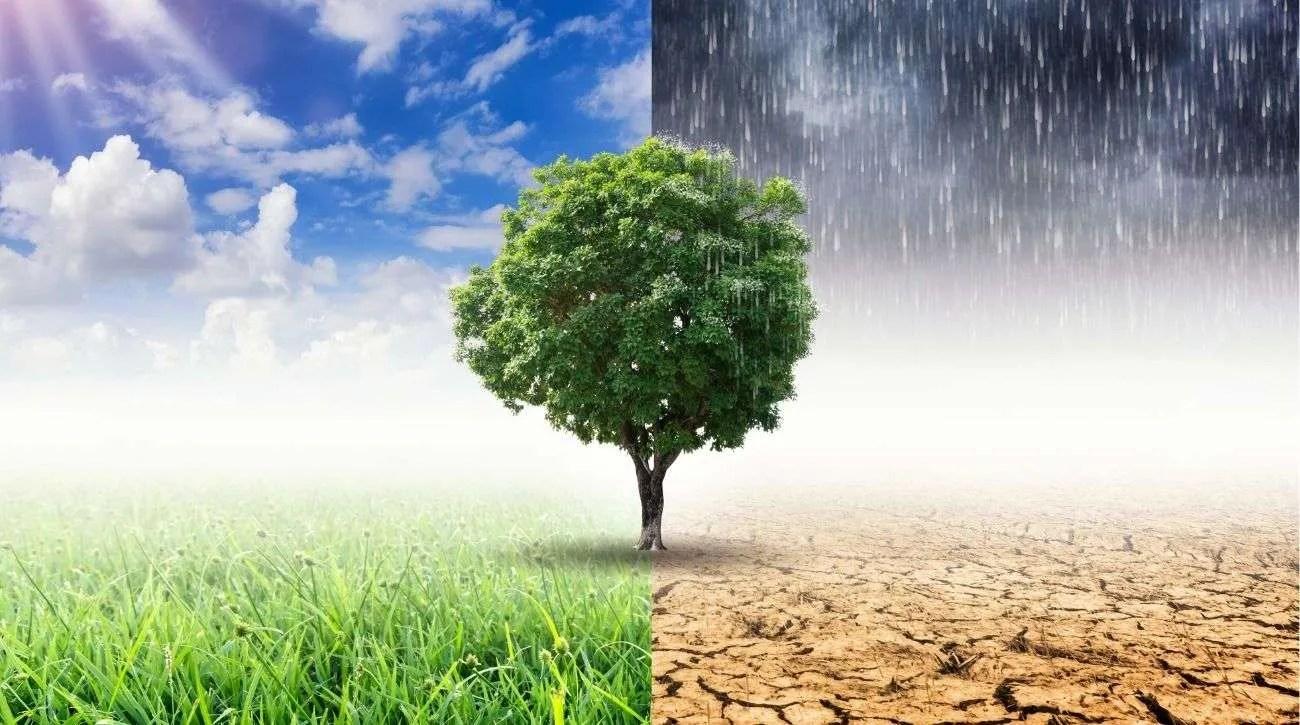 various climates