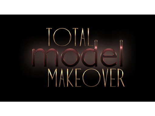 Logo for Virtual Modeling Television Program