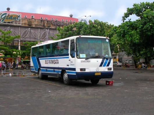 GMM Starliner yang digunakan untuk bus pariwisata :roll: