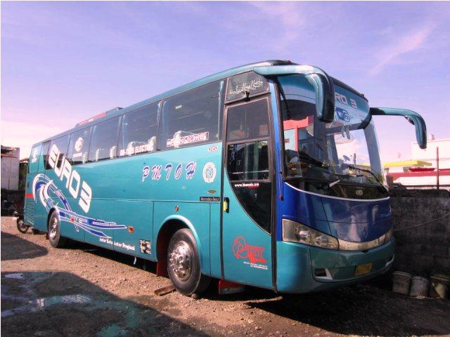 Bus – bus PO. PMTOH 8
