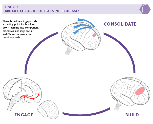 Consolidating learning definition in psychology